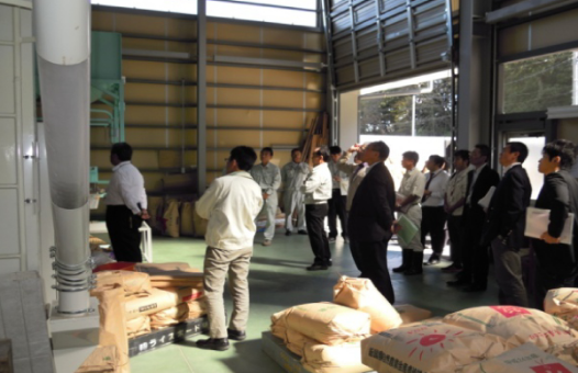 inspection_mitsuke-staff1