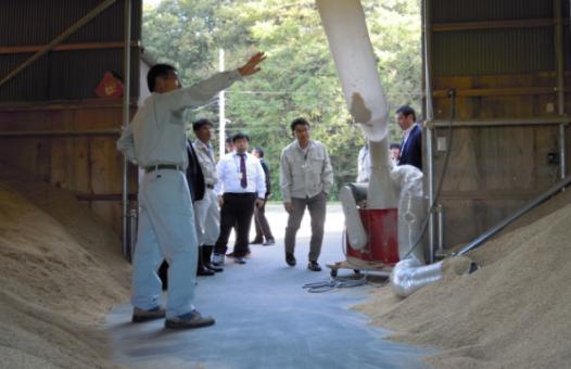 inspection_mitsuke-staff2