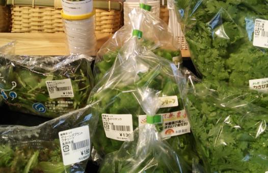 vegetables-shipment1
