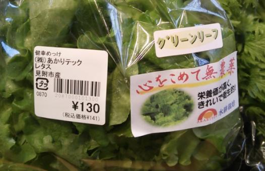 vegetables-shipment2